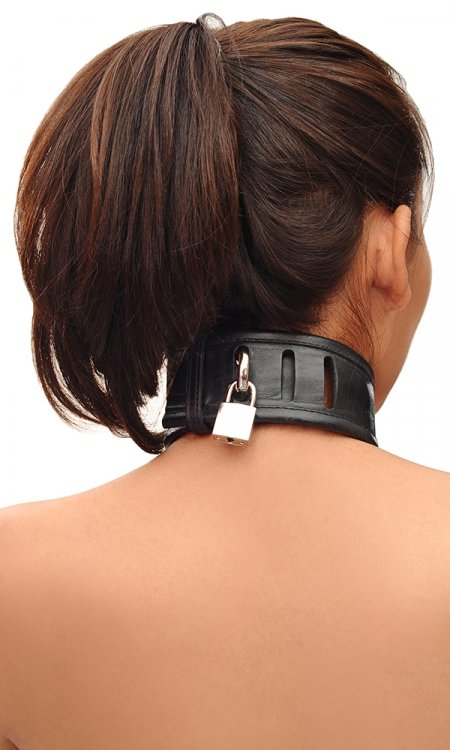 2 inch Leather Trainer Collar