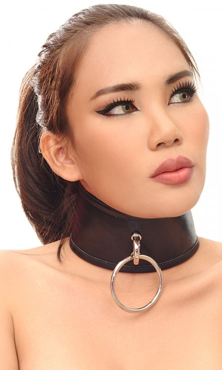 3 inch Leather Control Collar