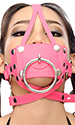 Pet Trainer Gag Harness