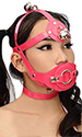 PVC Gag Head Harness