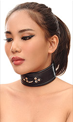 "2"" Leather Trainer Collar"