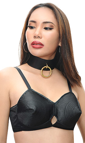 2 inch Collar with Gold fittings