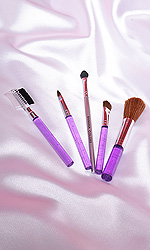Brush Set (Handbag size)